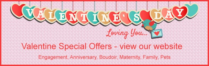Public_email_banner_Valentines_2